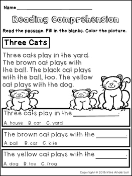 Reading Comprehension Activity Freebie