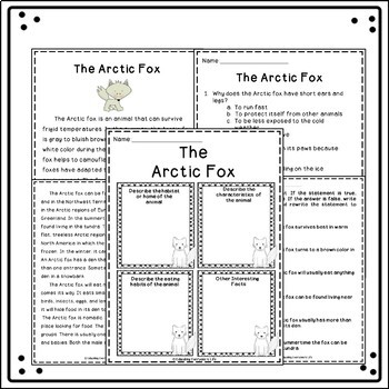 Reading Comprehension The Arctic Fox