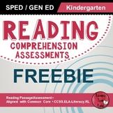 Reading Comprehension Assessments FREEBIE (Kindergarten)