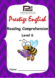 Reading Comprehension Book - Level 6
