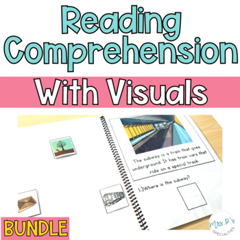 Reading Comprehension Books With Visual Choices BUNDLE
