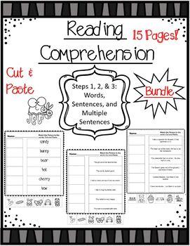 Reading Comprehension Bundle: Matching Words & Sentences  w/Illustrations