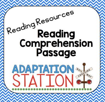 Reading Comprehension Freebie-My Cat Bailey