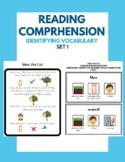 Reading Comprehension - Identifying Vocabulary - Set 1