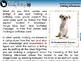 Reading Comprehension: Making Inferences - MAC Gr. 3-8