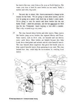 Reading Comprehension Narrative Test Practice Passages STAAR
