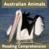 Australian Animals Reading Comprehension Non Fiction Text