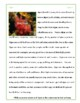 Reading Comprehension Packet A for Grades 5-6