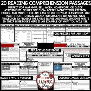 Distance Learning Reading Comprehension Passages & Questions 3rd Grade 4th Grade