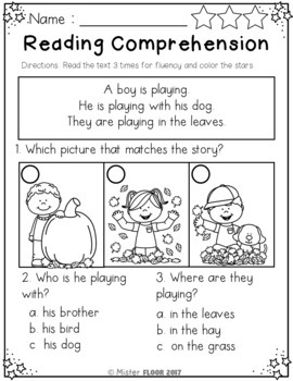 Reading Comprehension Passages- All Seasons Bundle