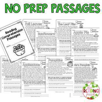 Reading Comprehension Passages (Fall) for Second Graders
