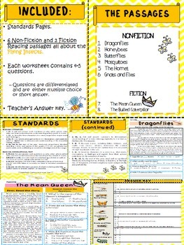 Reading Comprehension Passages - Flying Insects