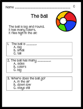 Reading Comprehension Passages: Guided Reading Level C
