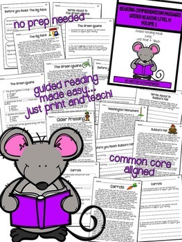 Reading Comprehension Passages: Guided Reading Level M Volume 2