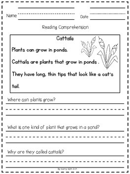 Reading Comprehension Passages:  Life in the Pond (Kindergarten and First Grade)