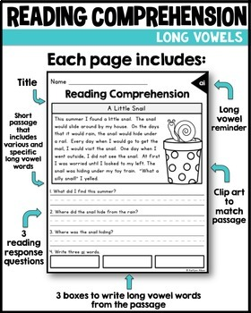 Reading Comprehension Passages - Long Vowels