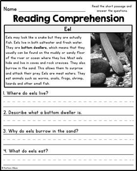 Reading Comprehension Passages - Ocean Animals