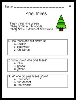 Reading Comprehension Passages Winter Themed: Guided Reading Level C
