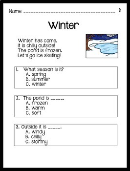 Reading Comprehension Passages Winter Themed: Guided Reading Level D