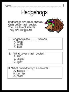 Reading Comprehension Passages Winter Themed: Guided Reading Level E