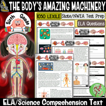 Reading Comprehension Passages and Questions (The Human Body) Gr 6
