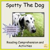 Reading Comprehension, Presentation, Lesson Plans, Worksheets, Optional Audio