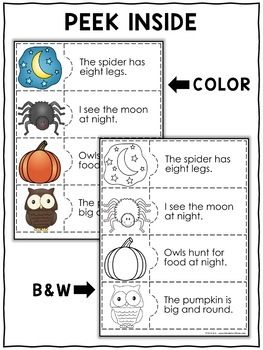 Reading Comprehension Puzzles - Fall Activities
