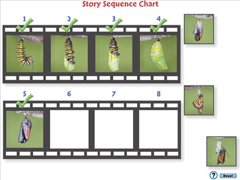Reading Comprehension: Sequencing - NOTEBOOK Gr. 3-8