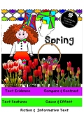 Reading Comprehension Spring Review 2nd and 3rd Grade