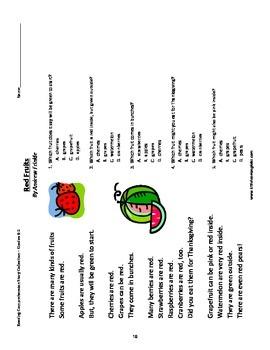 Reading Comprehension Stories - Primary Grades Workbook