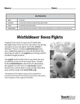 Reading Comprehension: Whistleblower Saves Piglets