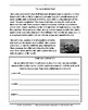 Reading Comprehension by Topic: The Environment (Common Core Worksheets)