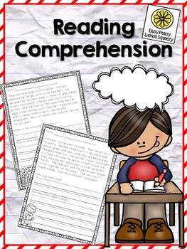 Reading Comprehesion