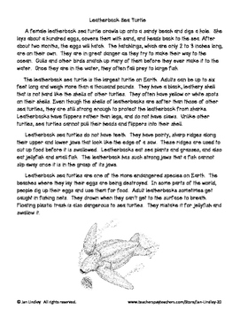 Reading Comprehension with Informational Text: Ocean Animals Theme