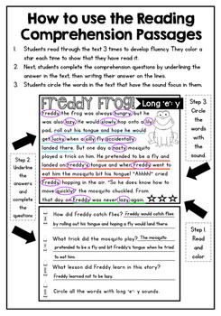 Reading Comprehension Passages and Phonics Activities FREEBIE!