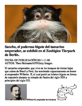 Reading Exercise for Los Animales Sancho el Tamarindo