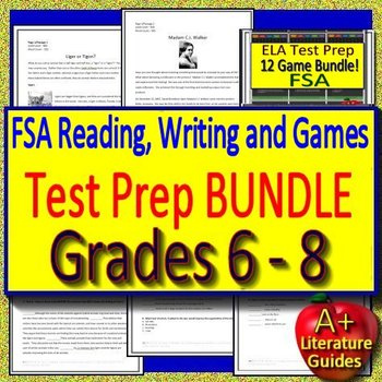 FSA Reading and Writing Test Prep Bigger Bundle 2019 Style Google Ready!