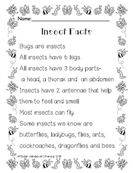 Insects-Reading Facts and Comprehension