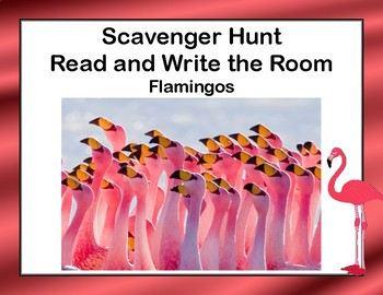 Reading-Flamingos- Read and Write The Room- Grades 3-5