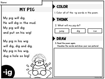 Reading Fluency and Comprehension - CVC Word Family Poems