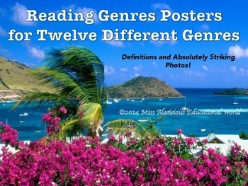 Reading Genre Mini-Posters for Twelve Different Genres!
