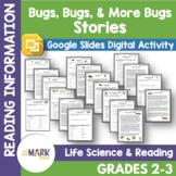 Bugs, Bugs & More Bugs Reading Information Google Slides &