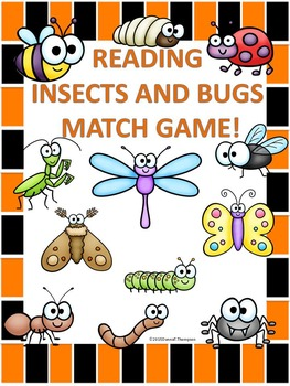 Reading Insects and Bugs Game