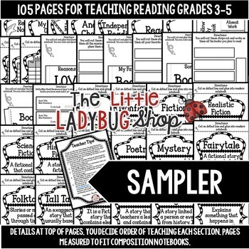 Reading Interactive Notebook & Literature Activities
