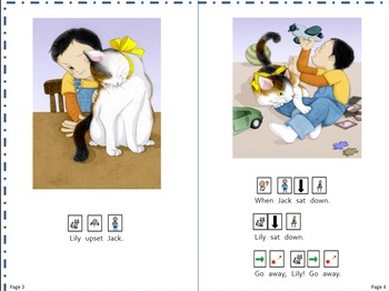 Reading Level C (Reading A-Z) Book with Picture Symbol Tex