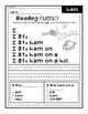 Reading Mastery Reading Fluency Sentences L91-108 (Set 1)