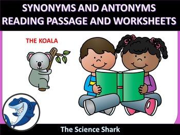 SYNONYMS AND ANTONYMS - The Koala - ELA L.4.5C