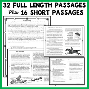 Reading Comprehension Passages and Questions - 2nd and 3rd Grade