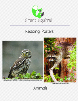 Reading Posters - Animals
