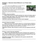 Reading Raccoon Social Behavior Ecology Unit Investigation